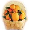 12 Pieces Orange Basket