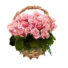50 Pink Roses in Handle Basket