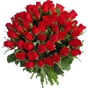 48 Red Roses Bunch